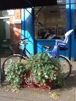Yoga Junction Centre-Bicycle leaning on a trough of flowering plants